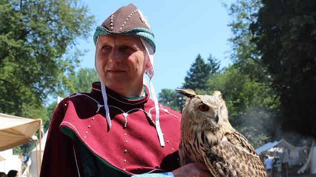 Kámenské hradohraní nabídne návštěvníkům také ukázky práce s dravými ptáky i sovami. Ilustrační snímek.