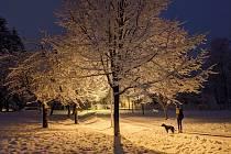 Čtenáři Deníku fotí kouzlo ladovské zimy