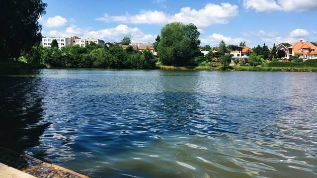 Rybník Dvorák v Humpolci.