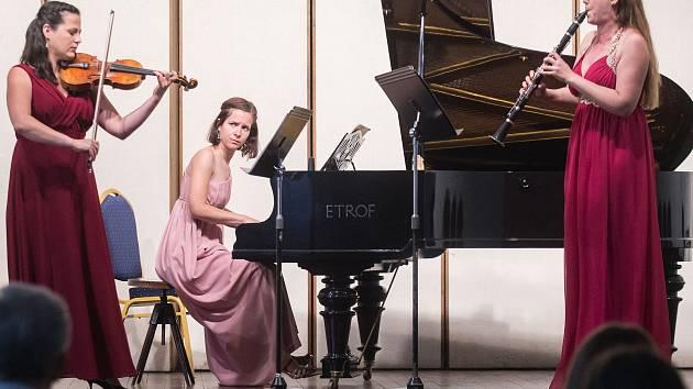 22. ročník Mezinárodního klarinetového festivalu v Žirovnici.