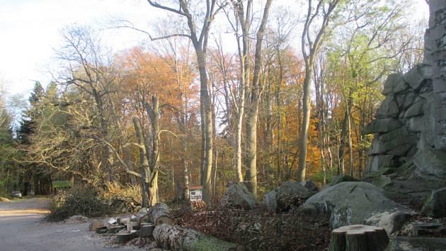 Ze starých kaštanů zbyla na Roštejně hromada dřeva. Tyto majestátné stromy po dlouhou dobu kryly věž Roštejna, nyní se jejich pokácením ukázala středověká pevnost v celé své kráse. S novou výsadbou se do budoucna nepočítá.