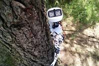 Robot Matylda.