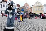 Lemur s rekordně dlouhým ocasem. Foto: archiv Agentury Dobrý den