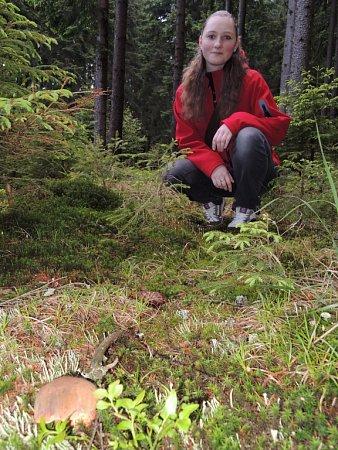 Vlese poblíž Drážďan bylo možné narazit na nějaké houby už minulý víkend.