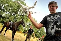 Na malé farmě na Vysočině trénují koně i pro hollywoodské kasovní trháky.
