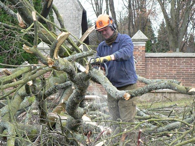 V úterý padl k zemi například strom u hřbitovní zdi v lokalitě u obřadní síně.