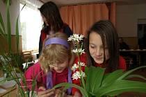 Mladí zahrádkáři soutěžili v Pelhřimově.