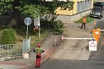 V areálu pelhřimovské nemocnice pracují v těchto dnech odborníci na zeleň.