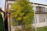 Chátrající kulturní dům ve Starém Pelhřimově