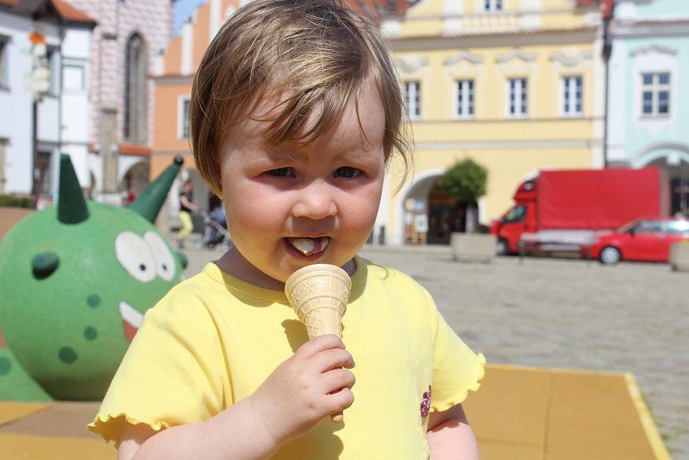 Zmrzlina. Ilustrační foto