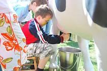 Na počáteckém Dni přírody se návštěvníci nenudí. Vloni si zájemci mohli vyzkoušet, jak podojit krávu. Letos se Valchovskou alejí mohou za asistence zkušeného mushera projet se psím spřežením.
