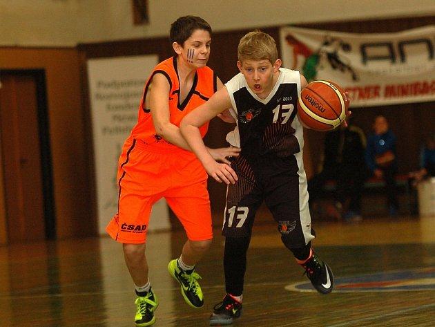 V květnu pelhřimovští basketbalisté na mistrovství republiky třináctiletých vybojovali pátou příčku, letos je rozhodující boje o šampionát teprve čekají.
