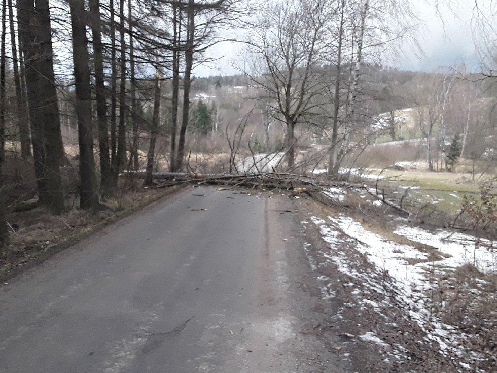 Hasiči odstraňují spadané stromy a větve na silnicích Vysočiny.