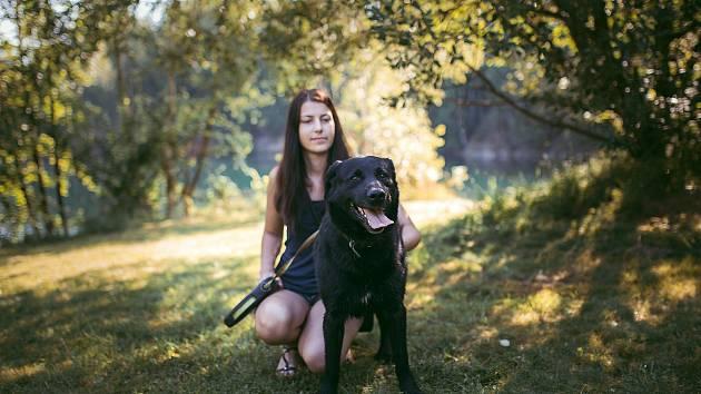 Oddaný pejsek Sorbi čeká dva roky na nový domov.