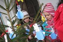 Pelhřimovské Masarykovo náměstí bylo ve středu plné dětí z mateřských i základních pelhřimovských škol. Školáci a předškoláci měli za úkol ozdobit co nejlépe stromek, který patří právě jejich třídě. Připomněli si také vánoční zvyky a tradice.
