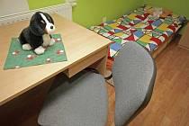 Krizová lůžka byla před dvěma lety zřízena také v dětském domově v Nové Vsi u Chotěboře.