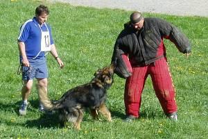 Ačkoliv to tak na první pohled nevypadá, podle figurantů vnímají psi zadržení pachatele jako hru.