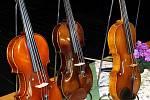 Geniálním nástrojem jsou podle Svěceného housle. O jejich historii natočil šest CD, jedno DVD a vydal vydal i česko-anglickou publikaci nazvanou Slavné evropské housle.
