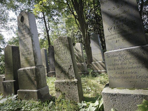 O židovské historii Černovic vypráví staré kamenné náhrobky.