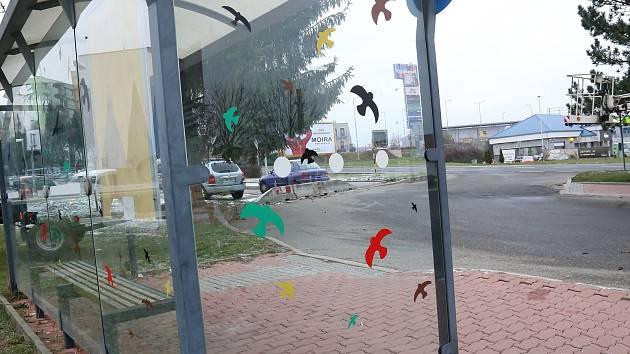 Polepení zastávek siluetami ptáků. Zastávka v Pražské ulici.