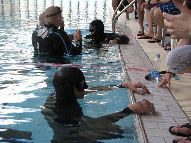 Příznivci volného potápění se zanořili v Pelhřimově