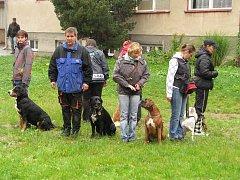 Členové pelhřimovského kynologického klubu chodí po ukázkách co chvíli. Důvod je zřejmý, totiž šířit povědomí o výcviku psů a také nabádat jejich majitele ke zodpovědnosti.