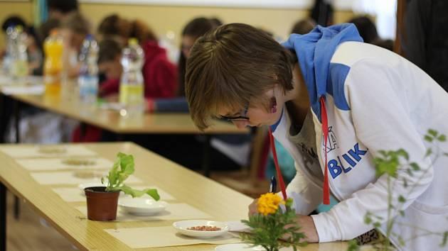 V přírodovědných znalostech se ve středu utkalo na třiadvacet žáků základních škol Pelhřimovska.