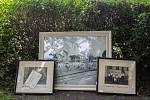 Lípa svobody na kamenickém náměstí, ilustrační foto.