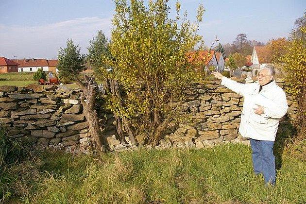 Ivana Hefková ukazuje zeď z kamenů, která podle ní má být posunuta do zahrady Milana Pražáka.
