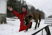 """Záchranářský pes potřebuje častý pohyb. """"Snažíme se minimálně jednou za měsíc věnovat psům intenzivní výcvikový víkend,"""" říká kynoložka Markéta Sudová."""