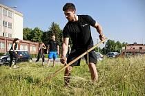Ochránci přírody vyrazí na pomoc suchomilným trávníkům s kosami.
