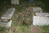 Několik staletí staré náhrobky na židovském hřbitově se staly minulý rok terčem vandalů.