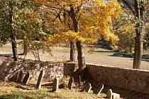 Nejstarší náhrobek na židovském hřbitově u Pavlova pochází z doby kolem roku 1800. Říká to alespoň tamní informační cedule Klubu českých turistů.