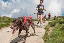 Disciplína kombinující výcvik psa a atletiky canicross, se uskuteční v rámci seriálu Nativia challenge tuto sobotu v Humpolci.