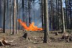 Požár u sedlické přehrady v pondělí 6. dubna.