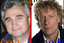 Boj o křeslo do Senátu spolu svedl Milan Štěch za ČSSD a Stanislav Bernard jako nezávislý kandidát za ODS. Vítězem se stal Milan Štěch
