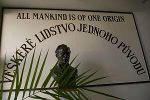 Aleš Hrdlička se věnoval antropologickému výzkumu mezi americkými indiány nebo domorodci kmenů v Africe, Asii, Austrálii či Evropě.