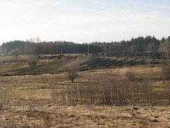 Vedle solárních panelů by mohla vzniknout průmyslová zóna táhnoucí se až k lesu.