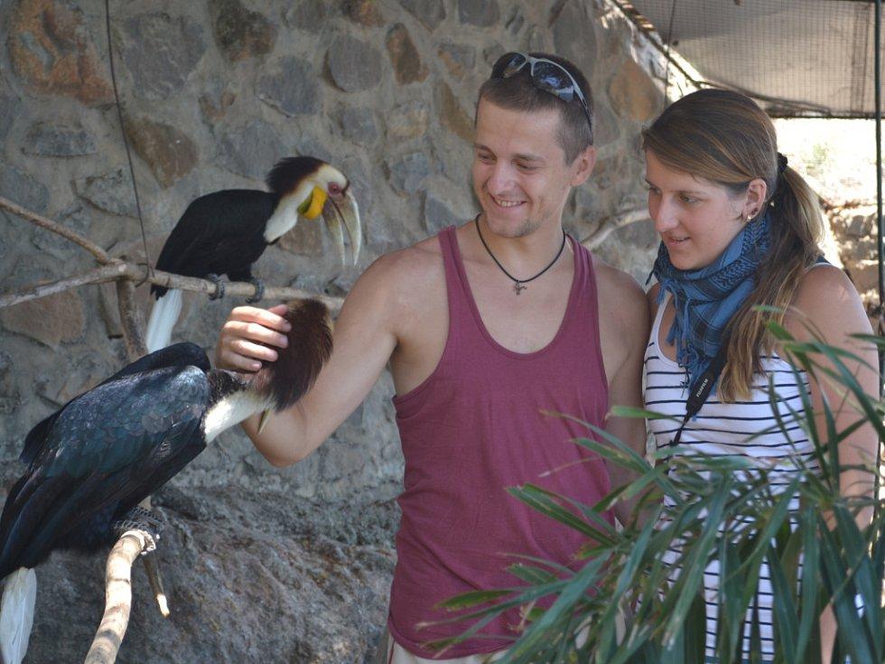 Studenti Veronika Makovcová a Standa Němec odjeli na indonéský ostrov Bali poznat mimo jiné tamní faunu. Na snímku jsou se zástupcem ptačí říše, zoborožcem řasnatým.