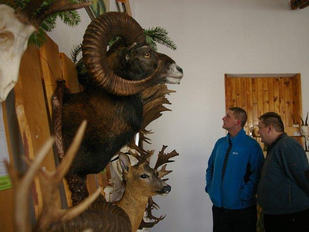 Výstava trofejí v Pelhřimově
