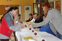 V pátek začalo druhé kolo senátních voleb.
