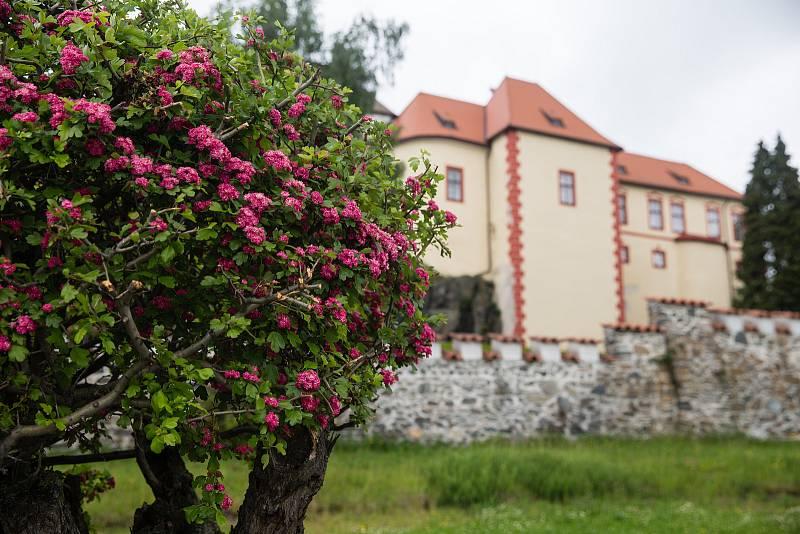 Hrad Kámen na Pelhřimovsku.