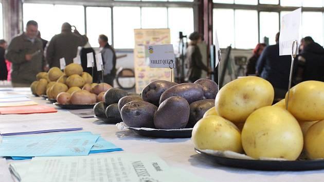 Polní den o bramborách.