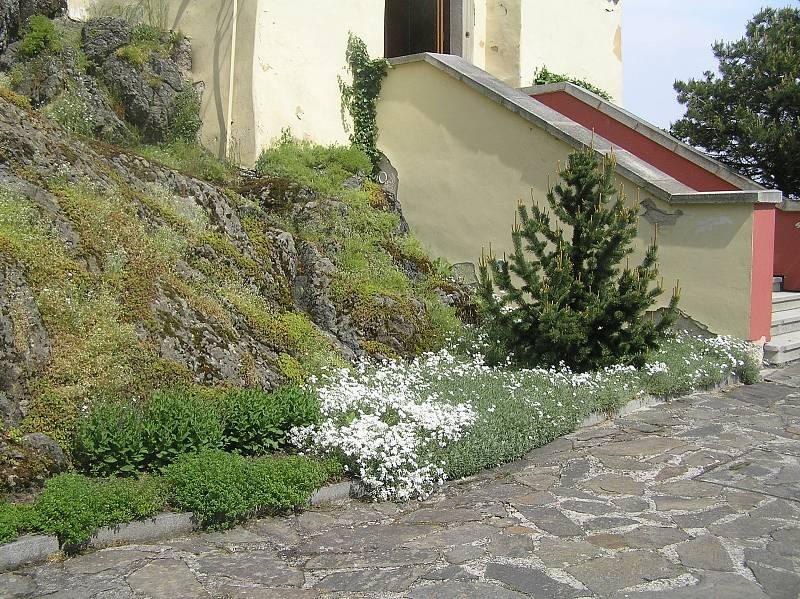 Tak vypadají na jaře zahrady kolem hradu Kámen na Pelhřimovsku