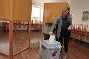 Volby v Nové Cerekvi.