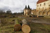 U zámku v Červené Řečici se kácejí stromy.