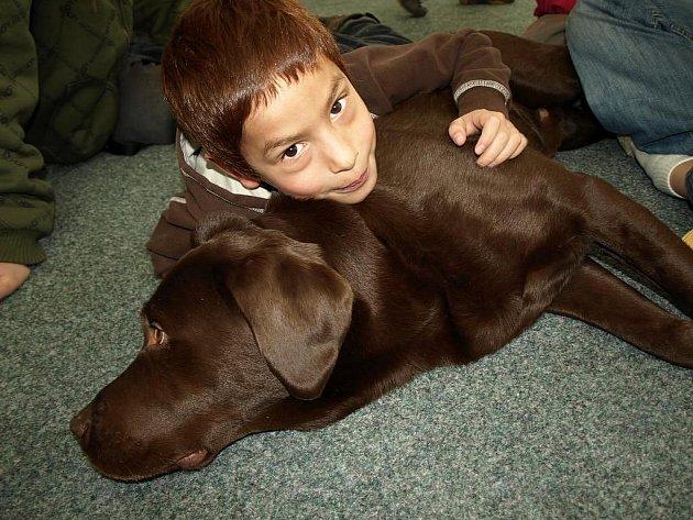 Canisterapie pro děti z náhradních rodin