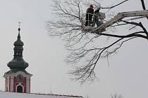 U kácení přestárlých stromů asistovali hasiči s vysokozdvižnou plošinou i horkým čajem.