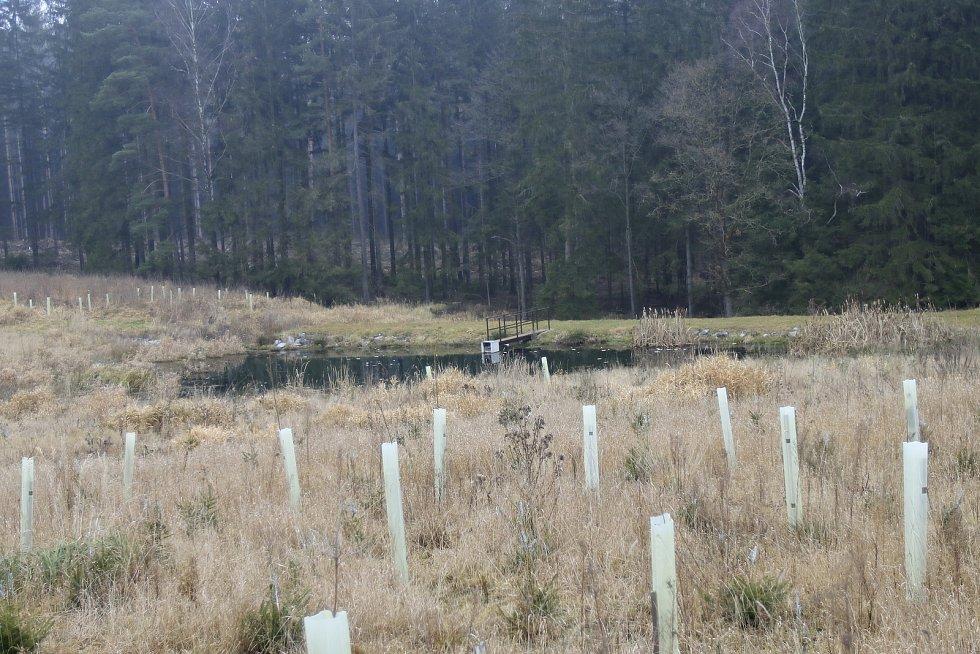 V Těchobuzi obnovují a budují nové rybníky.