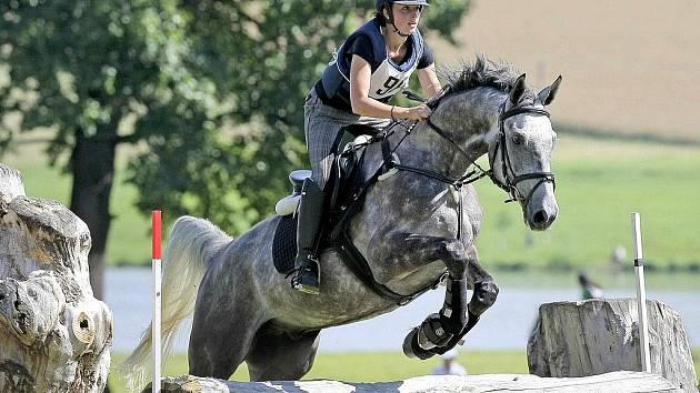 Tradiční Zlatá podkova prověří koně i jezdce po všech stránkách. Součástí závodů military je drezura, terénní zkouška a parkur.